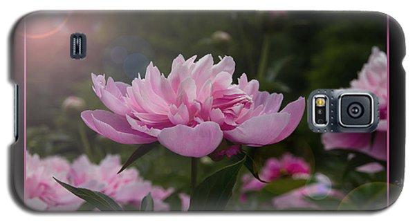 Peony Garden Sun Flare Galaxy S5 Case by Patti Deters