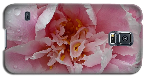 Galaxy S5 Case featuring the photograph Peony Love by Julie Andel