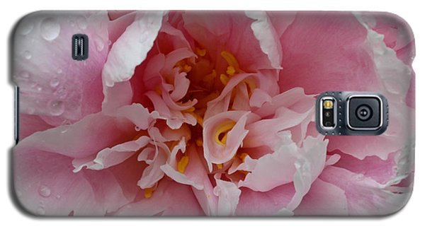 Peony Love Galaxy S5 Case by Julie Andel