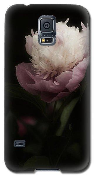Peony Romantica Galaxy S5 Case by Richard Cummings