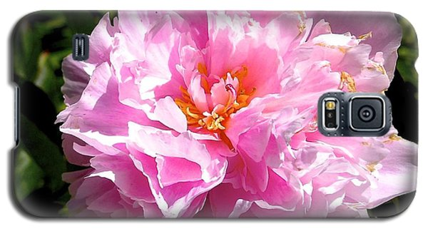 Galaxy S5 Case featuring the photograph Peony by Sher Nasser