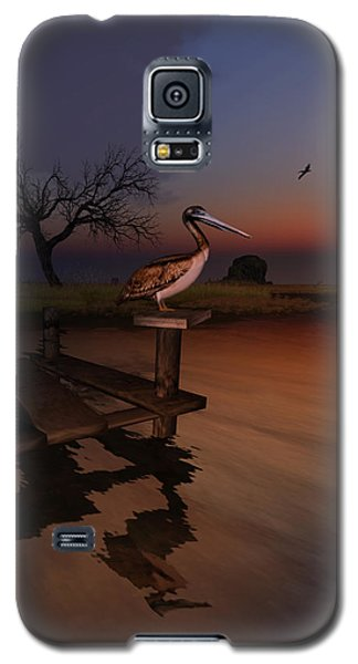 Galaxy S5 Case featuring the digital art Perch With A View by Kylie Sabra