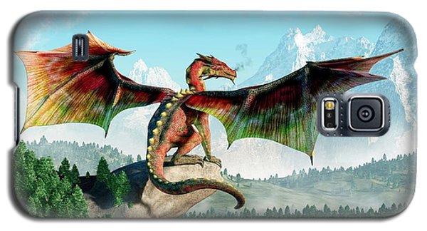Perched Dragon Galaxy S5 Case