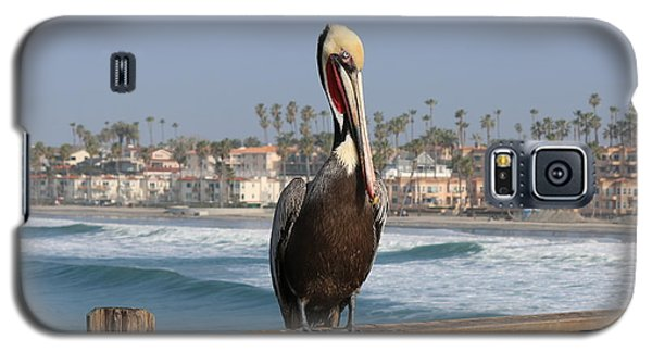 Perched On The Pier Galaxy S5 Case
