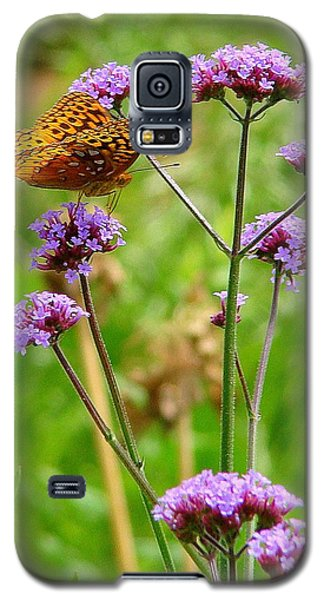 Perched Galaxy S5 Case