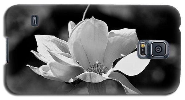 Perfect Bloom Magnolia In White Galaxy S5 Case