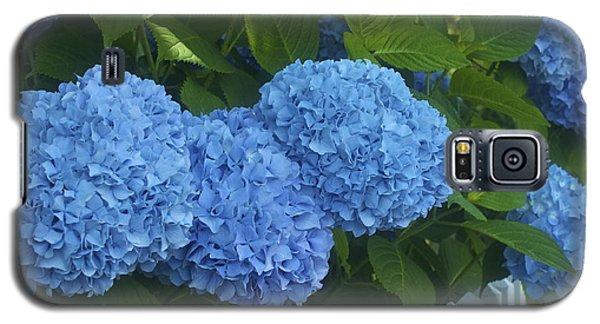Perfect Blue Hydrangeas  Galaxy S5 Case