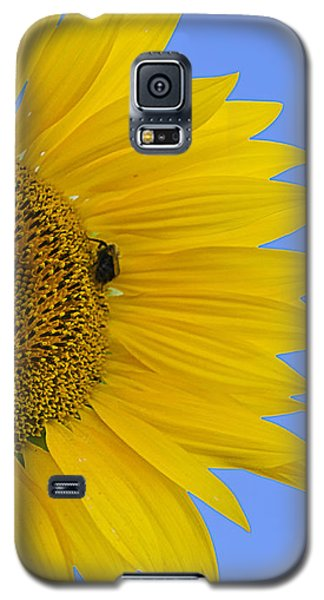 Perfect Half With Blue Sky Galaxy S5 Case