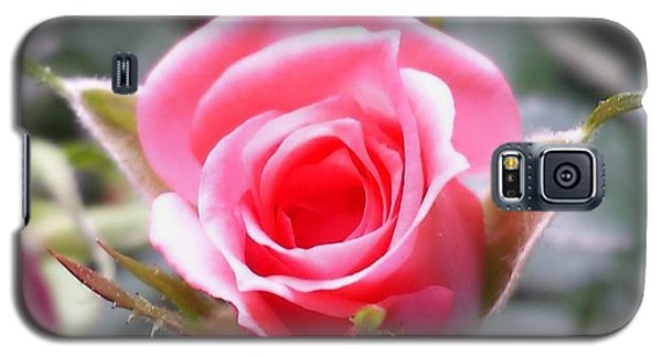 Perfect Rosebud In True Color Galaxy S5 Case by Becky Lupe