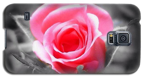 Perfect Rosebud In Black Galaxy S5 Case by Becky Lupe