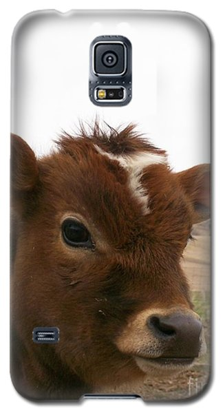 Galaxy S5 Case featuring the photograph Perfect Stance by Sara  Raber