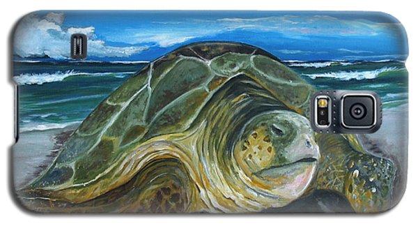 Perseverance Galaxy S5 Case by Dawn Harrell