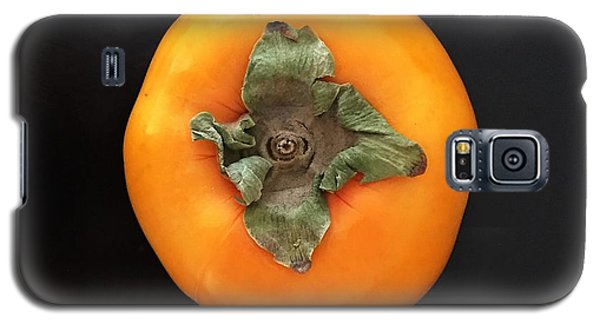 Orange Galaxy S5 Case - Persimmon by Julie Gebhardt