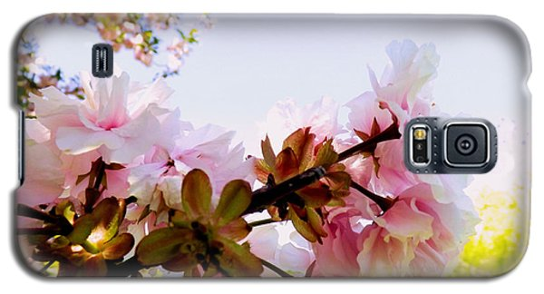 Galaxy S5 Case featuring the photograph Petals In The Wind by Robyn King