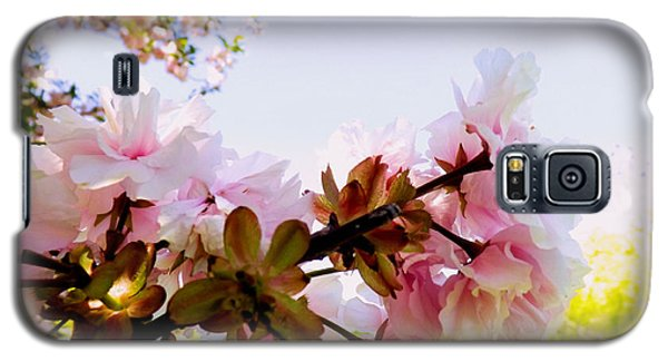 Petals In The Wind Galaxy S5 Case by Robyn King