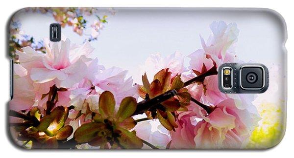 Petals In The Wind Galaxy S5 Case