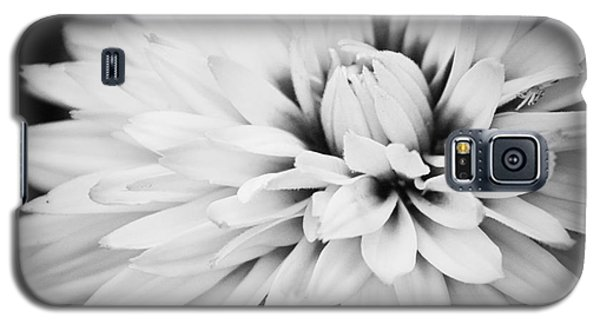 Petals Galaxy S5 Case by Nancy Dempsey