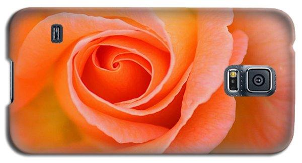 Galaxy S5 Case featuring the photograph Petals Of Peach by Rowana Ray