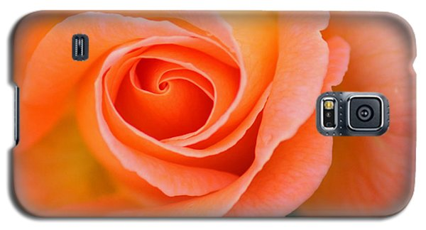 Petals Of Peach Galaxy S5 Case by Rowana Ray