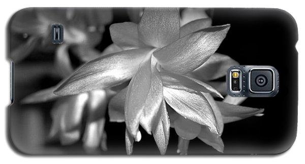 Petals Of Silver Galaxy S5 Case
