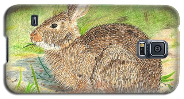 Galaxy S5 Case featuring the drawing Peter Cottontail by Sheila Byers
