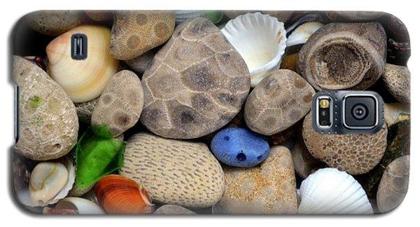 Petoskey Stones Lll Galaxy S5 Case