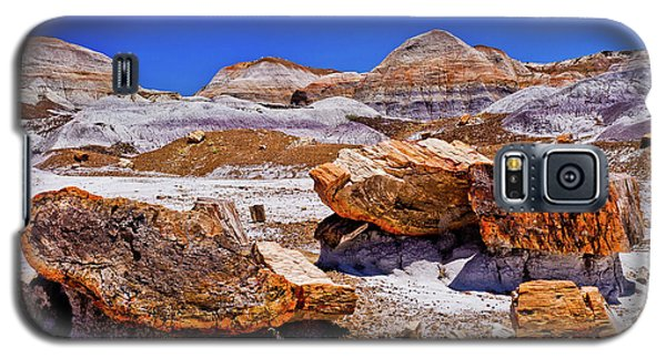 Galaxy S5 Case featuring the photograph Petrified Forest - Painted Desert by Bob and Nadine Johnston