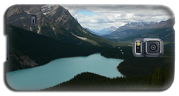 Galaxy S5 Case featuring the photograph Peyote Lake In Banff Alberta by Laurel Best