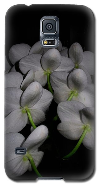Phalaenopsis Backs Galaxy S5 Case