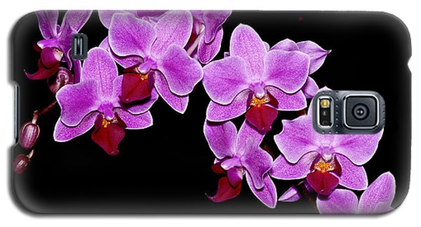 Phalaenopsis Galaxy S5 Case