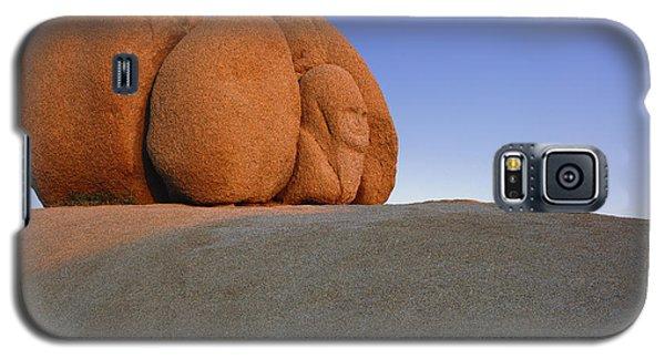 Pharaoh Look Galaxy S5 Case