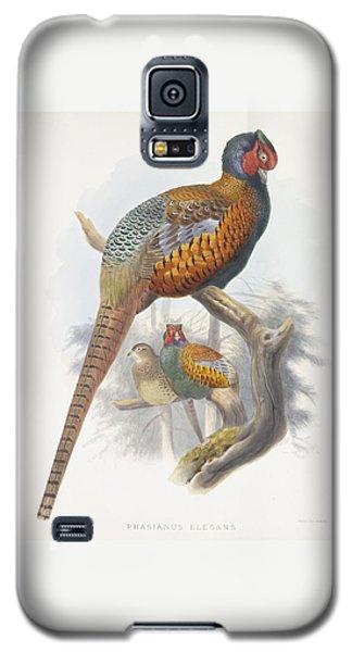 Phasianus Elegans Elegant Pheasant Galaxy S5 Case