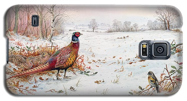Pheasant And Bramblefinch In The Snow Galaxy S5 Case by Carl Donner