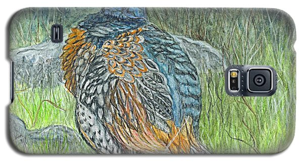 Galaxy S5 Case featuring the drawing Pheasant Common Male by Carol Wisniewski