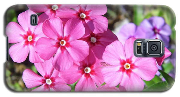 Galaxy S5 Case featuring the photograph Phlox Beside The Road by D Hackett