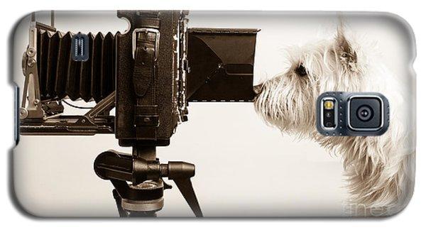 Pho Dog Grapher Galaxy S5 Case by Edward Fielding