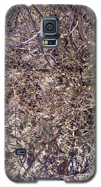 Galaxy S5 Case featuring the photograph Phylum by Ramona Matei