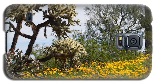 Picacho Peak Wild Flowers Galaxy S5 Case