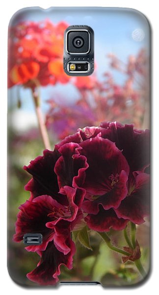 Galaxy S5 Case featuring the photograph Pick Me by Lew Davis