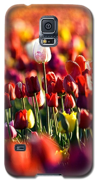 Galaxy S5 Case featuring the photograph Pick Me by Ronda Kimbrow
