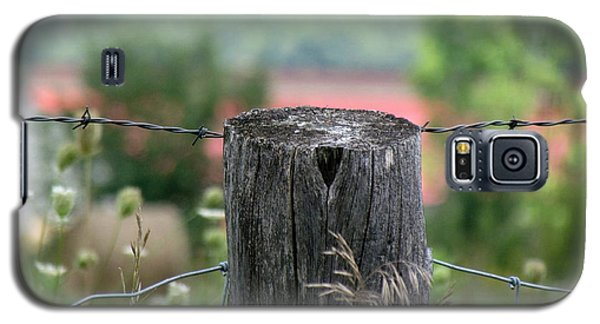 Picket Fence Wild Flowers Galaxy S5 Case by France Laliberte