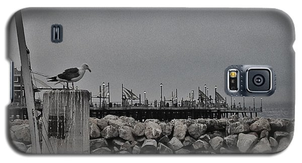Pier Lights Galaxy S5 Case