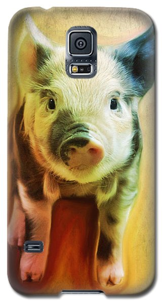 Pig Is Beautiful Galaxy S5 Case by Barbara Orenya