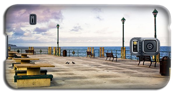 Pigeon Meeting At Redondo Pier Galaxy S5 Case by Joseph Hollingsworth