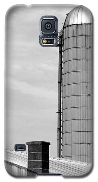 Galaxy S5 Case featuring the photograph Pigeon Perch by Mary Beth Landis