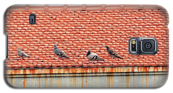 Galaxy S5 Case featuring the photograph Pigeons On Roof by Aaron Martens