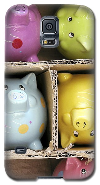 Pigs In A Box Galaxy S5 Case