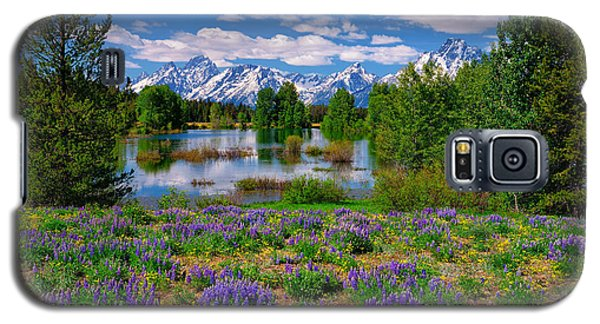 Pilgrim Creek Wildflowers Galaxy S5 Case