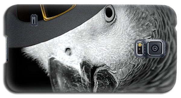 Pilgrim Parrot Galaxy S5 Case by Mim White
