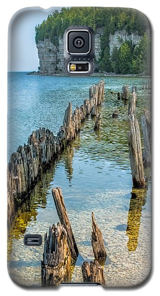 Pilings On Lake Michigan Galaxy S5 Case by Paul Freidlund